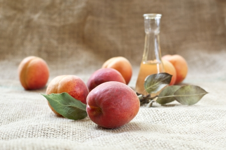 Apricot brandy with fresh and tasty apricot fruit on a table cloth. Selective focus with shallow depth of field.