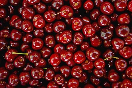 Group of ripe red cherries fruit
