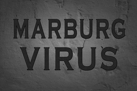 hemorrhagic: Word Marburg Virus isolated on dark background