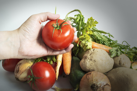 Hands holding freshly harvested tomatoes. Selective focus. Stock Photo