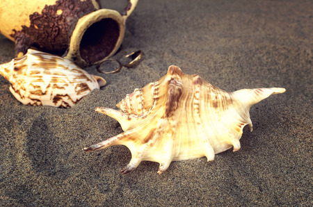 Seashells and amphora with golden rings in the sand on the beach. Selective focus.