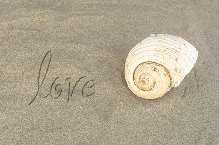 Written word Love on sand of beach with sea shell. Selective focus. Stock Photo