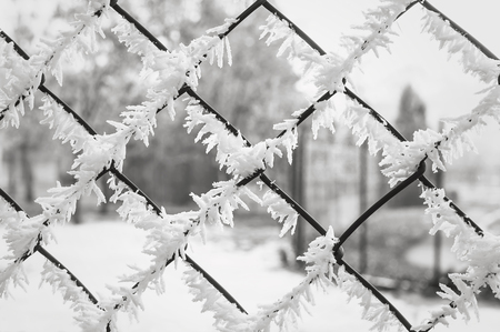 Wire mesh fence covered with frost.