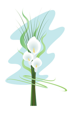 callas: A bouquet of callas on the blue background Illustration