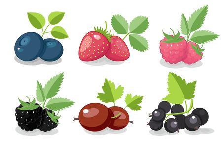 果実のコレクション