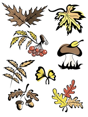 Fall images Vector