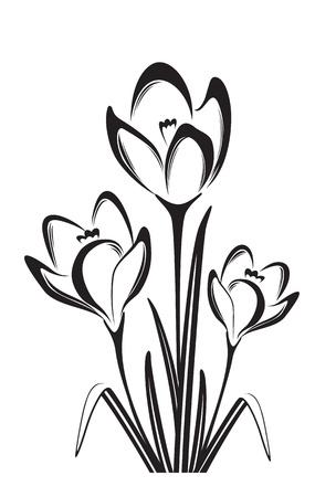 春の花の黒白いベクトル イラスト  イラスト・ベクター素材