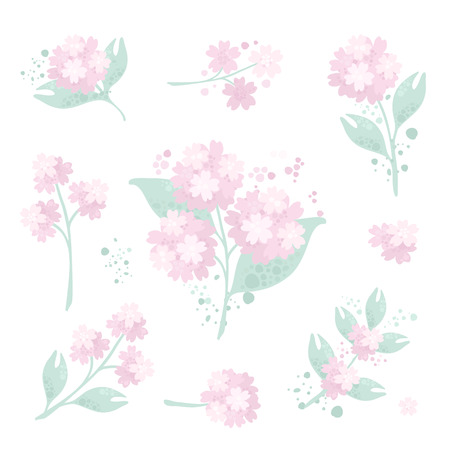 Collection of floral design elements in pastel colors