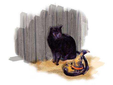 Mirada de gato negro de Halloween en el sombrero Foto de archivo - 86803483