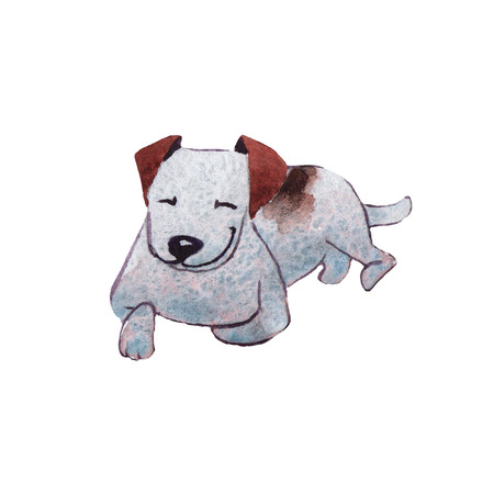 JackRussel terrier dog puppy hand drawing watercolor Stock Photo