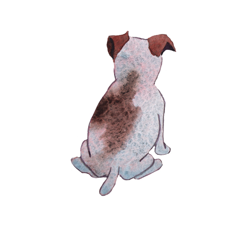 JackRussel terrier dog puppy hand drawing watercolor illustration