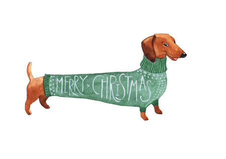 Dachshund Christmas dog in a green sweater watercolor hand drawing Archivio Fotografico