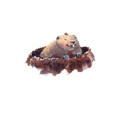 Happy Groundhog Day - hand drawing watercolor groundhog Banque d'images