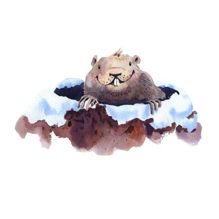 ハッピーグラウンドホッグデー - 手描き水彩グラウンドホッグイラスト 写真素材