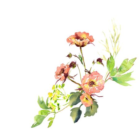 Hand drawing watercolor Wedding bridal bouquet romanric rusticred pink and purple and orange flowers ornament Foto de archivo - 132395880