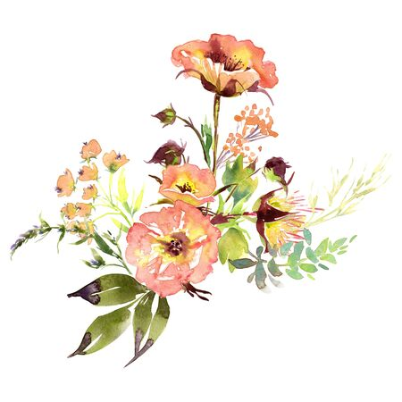 Hand drawing watercolor Wedding bridal flowers bouquet romanric rustic red pink and purple and orange flowers ornament