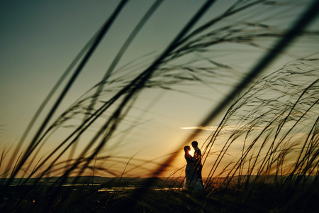 Man and Woman love silhouette in sunset in the field