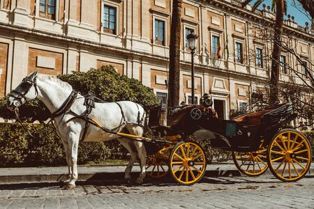 Horse carriage in Seville, the Giralda cathedral in the background, Andalusia, Spain 2019 February