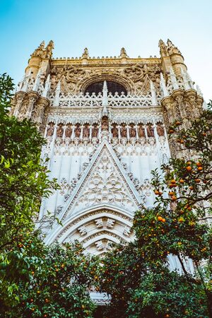 Spain, Andalusia, Seville, the Cathedral bell tower seen from the orange tree courtyard. 2019 February