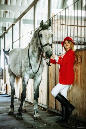 Young female rider with horse inside stable. equestrian sport Фото со стока