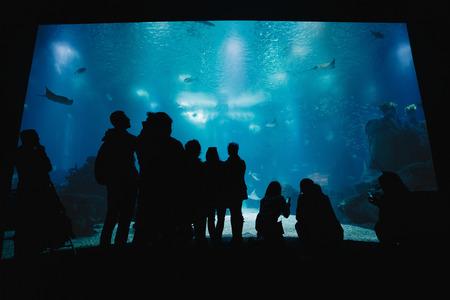 Oceanarium Underwater World. Group of People Watching Fish in a Oceanarium. Beauty of the Lisbon Oceanarium. The Dark Silhouettes of Visitors in the Backlight Standard-Bild