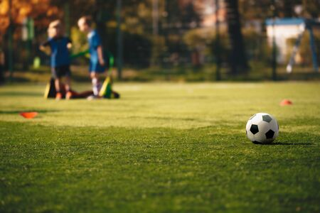 Soccer Horizontal Background of Sports Training for Children Team. Black White Soccer Ball on the Grass Pitch. Kids Team Standing in a Little Goal in Blurred Background