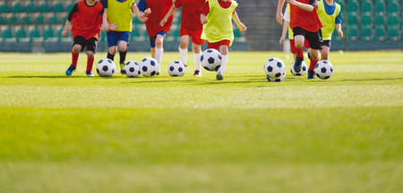 Children football training session. Kids running and kicking soccer balls. Young boys improving soccer skills. Football soccer training for kids Zdjęcie Seryjne