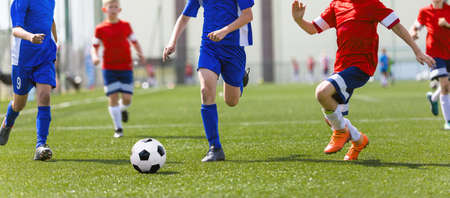Red and Blue Soccer Team Compete in Football League Match. Group of School Boys Running After Classic Ball on Grass Pitch