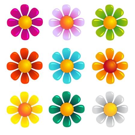 naturism: summer flowers