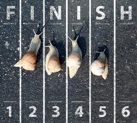 Slak lopen in de buurt van de finish Stockfoto