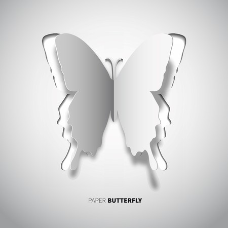 white color: papercut butterfly, white color wings in paper style Illustration