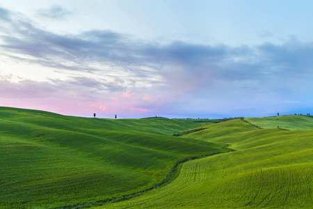 Italy Landscape on sunset, Scenic view of typical Tuscany country, Italy