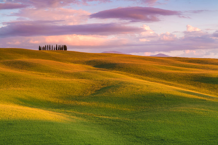 Famous cypress tree group in Val d'Orcia, magical sunset with amazing clouds, Tuscany, Italy 版權商用圖片