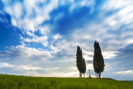 san quirico d'orcia: Famous cypress tree group in Val dOrcia, magical and amazing clouds, Tuscany, Italy Stock Photo