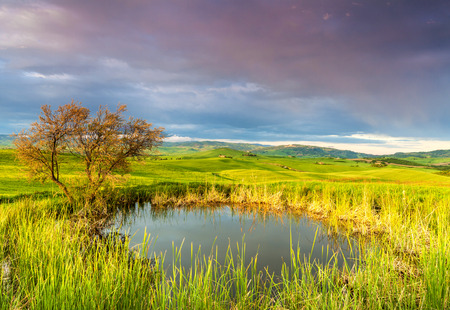 pienza: Tuscany, Landscape panorama at sunrise morning with tree and small lake, magical clouds under Pienza,Toscana - Italy