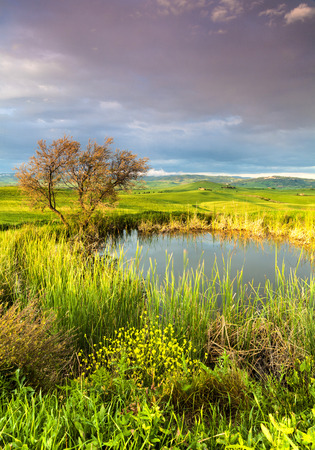 Tuscany, Landscape panorama at sunrise morning with tree and small lake, magical clouds under Pienza,Toscana - Italy