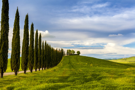 Villa in Tuscany with cypress road, seasonal nature landscape vintage hipster background 版權商用圖片