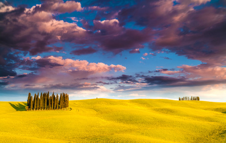 san quirico: Famous cypress tree group in Val dOrcia, magical sunset with amazing clouds, Tuscany, Italy