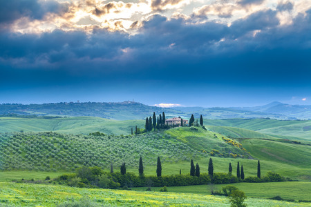 Belvedere landscape at sunrise morning. Idyllic view of hilly farmland in Tuscany in beautiful morning light, Italy. 版權商用圖片