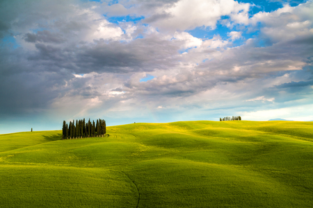 Famous cypress tree group in Val d'Orcia, magical sunset with amazing clouds, Tuscany, Italy 写真素材