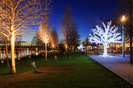 Christmas trees near river Danube in Bratislava, Castle with night lights, Slovakia 新聞圖片