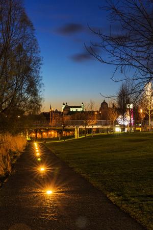 Christmas trees near river Danube in Bratislava, Castle with night lights, Slovakia 免版税图像