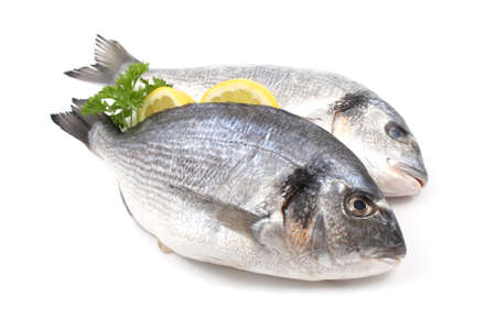 the dorada: close-ups of two dorada fish with lemon and parsley isolated on white