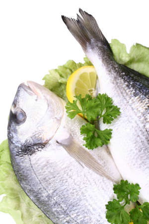 close-ups of two dorada fish with lemon and parsley isolated on white photo