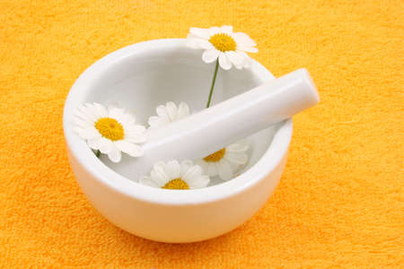 herbalism: camomile and mortar and pestle - beauty or health treatment
