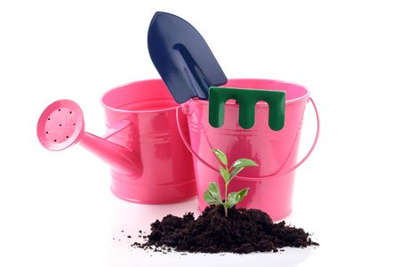 gardening tools and young plant isolated on white Stock Photo - 3049440