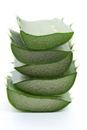 fresh leaves of aloe vera plant isolated on white Stock Photo - 3414768