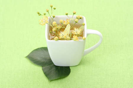 cup of tea and linden flowers on green Stock Photo - 3564595
