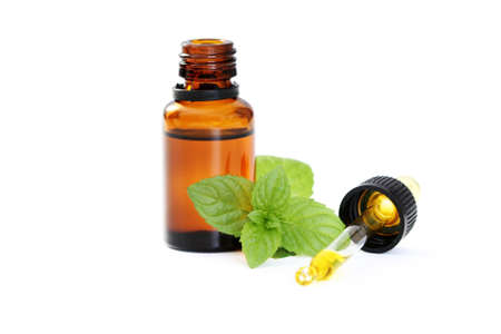 bottle of oil and fresh mint isolated on white Stock Photo - 4547136