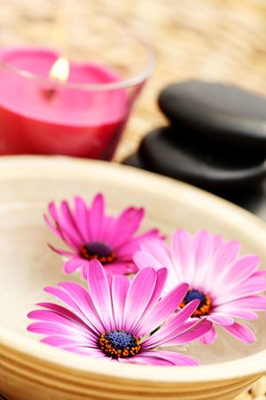 bowl of pure water and pink flowers - beauty treatment photo